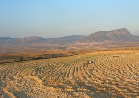 Vista general de Campo de San Juan
