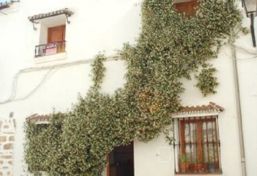 Aladín - Grazalema, Cádiz