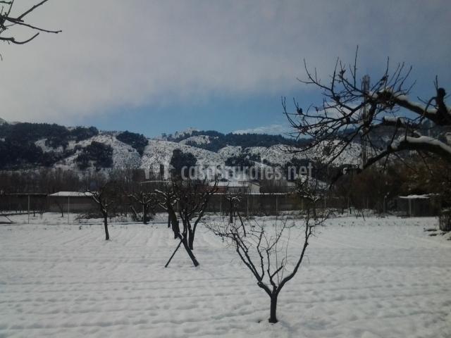 Jardín y alrededores nevados