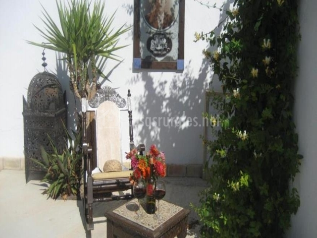 Adornos florales en jardín