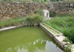 Manantial La Font del Mas del Senyor