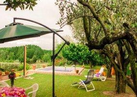 Vista de la piscina, con hamacas, sombrilla y mesa