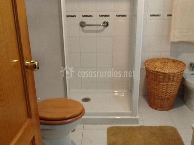 Aseo con inodoro junto a la ducha