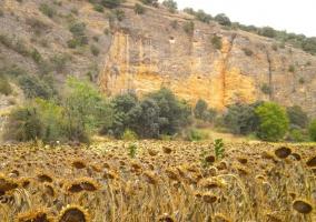 Parque Natural Barranco del Río Dulce