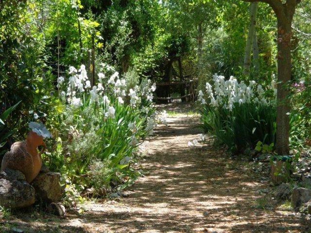 Paseo por el jardín