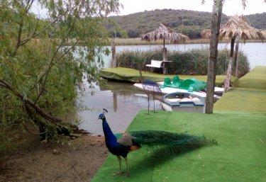 FInca rural Los Campos - Ruidera, Ciudad Real
