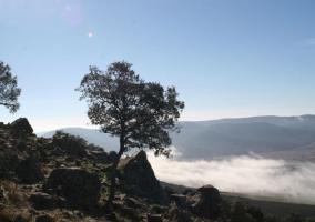 Pico de Navalrincón