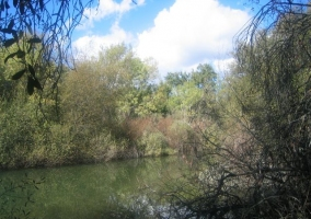 Río Bullaque
