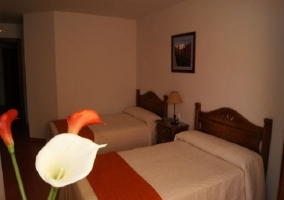 Tulipanes en dormitorio