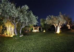Vistas de las zonas verdes de noche