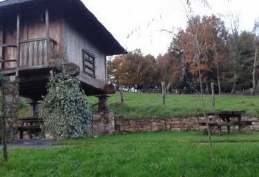 Foto del jardín