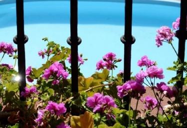 Casas rurales con piscina en miraflores de la sierra for Casas rurales sierra de madrid con piscina