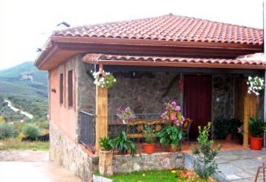 Los Olivos - Sotoserrano, Salamanca