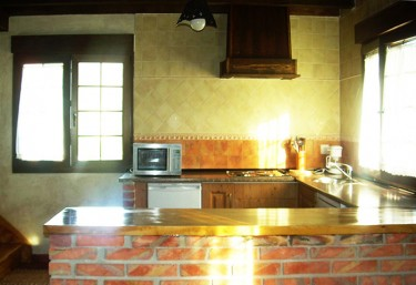 Kitchen with a brick bar and microwave