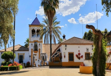Hacienda la Torre- Casa Rural de la Piscina - Posadas, Córdoba