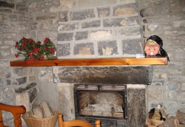 Living room fireplace common