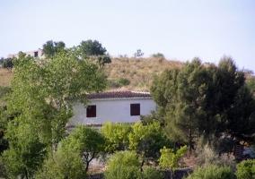 vistas de la casa con toda la vegetación