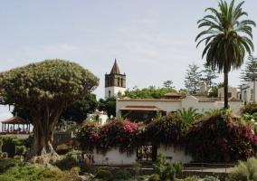 Casa rural la bodega casas rurales en tanque icod de los vinos tenerife - Casa rural icod de los vinos ...