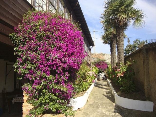 Apartamento hortensia en llanes asturias for Jardin urbano gijon