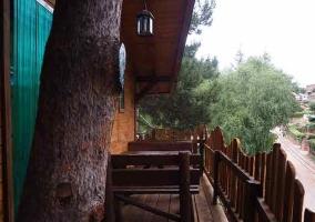 La cabaña del árbol