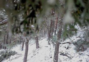Zonas nevadas
