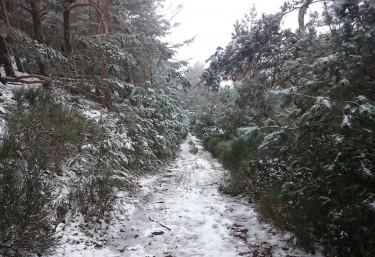 10 casas rurales en la nieve en braojos - Casas rurales en la nieve ...