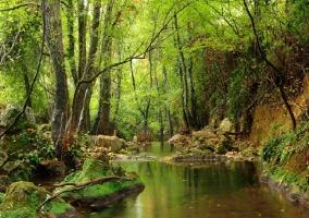 Parque Natural Sierra Norte de Sevilla