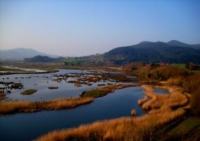 Reserva de Urdaibai