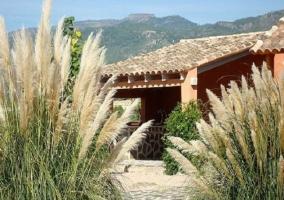 Plantas del jardín exterior y vista del porche