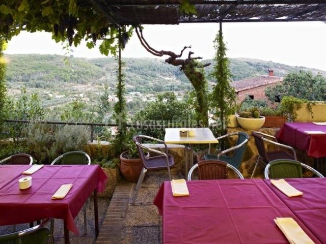 La terraza del restaurante