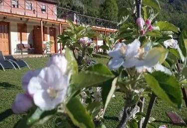 Apartamento Spa de La Reina - Campiello (Teverga), Asturias