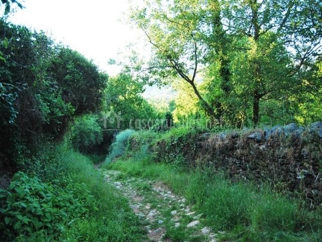 El quejigo casas rurales en aracena huelva - Casas rurales sierra de aracena ...