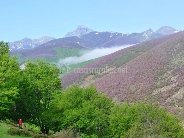 Casa el cinto casas rurales en mave palencia - Casas rurales montana palentina ...