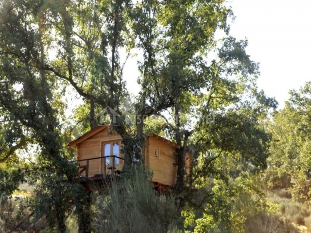 Caba a bosque dormir en los rboles en villasbuenas de - Cabanas en los arboles ...