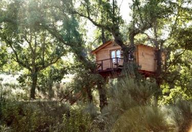 Cabaña Bosque- Dormir en los Árboles - Villasbuenas De Gata, Cáceres