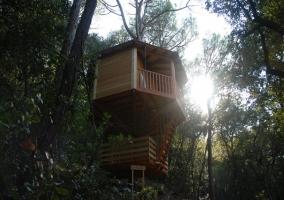 Cabaña Carlet- Cabanes Dosrius