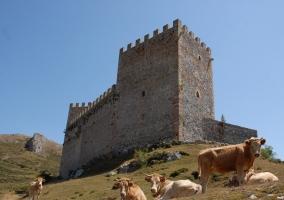 Castillo Argueso
