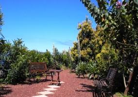 Zona ajardinada con mobilario de jardín