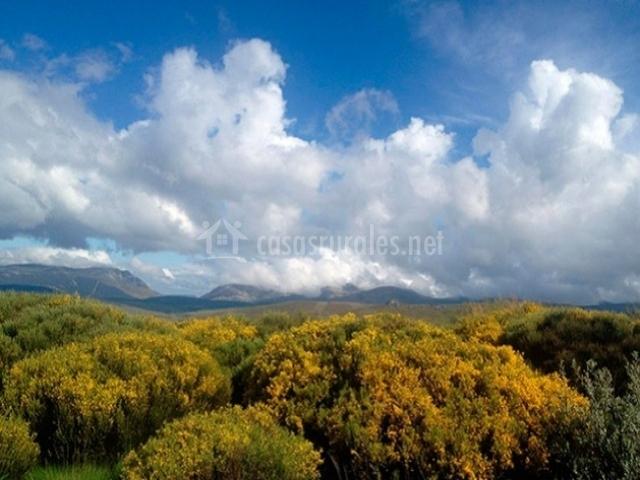 Casa rural la vallejera en tietar del caudillo c ceres for Casa rural jaraiz de la vera