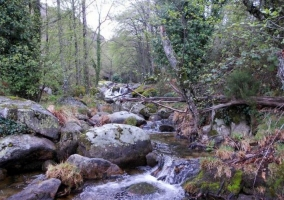 Zona de paisajes con agua