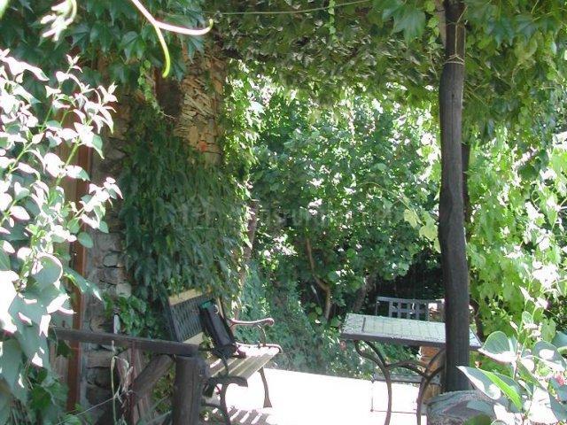 Exterior con terraza