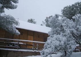 Cabaña 6 - Sierra Luna