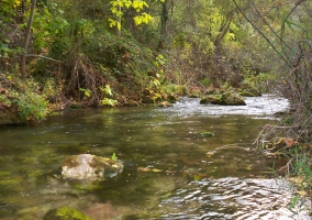 Tramo del río Mundo en Los Alejos