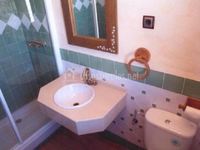 Aseo con ducha en la esquina y azulejos verdes