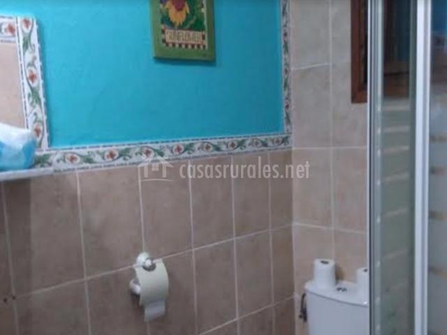 Aseo con ducha y paredes en azul