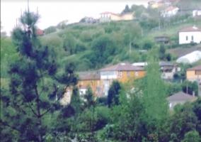 Vistas de las zonas verdes alrededor de la casa