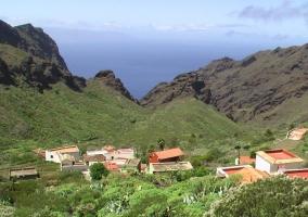 Zona natural de Los Carrizales