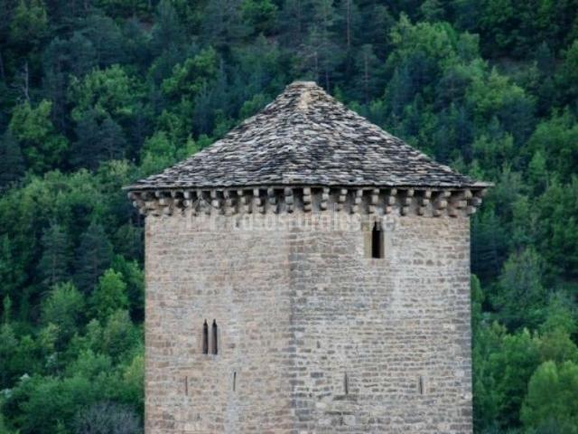Vistas de la parte superior de la torre