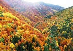Parque Nacional de Ordesa en otoño