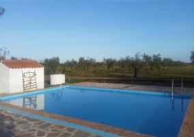 La amplia piscina